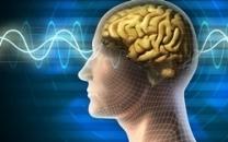 Bilim İnsanları, Akıllı Telefonların Beyne Olan Etkisini İnceledi