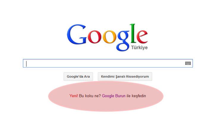 google  1 nisan 2013