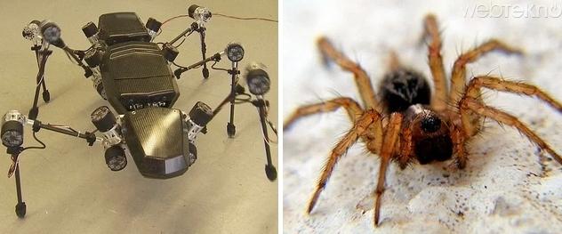 hayvanlardan esinlenilen robotlar ile ilgili görsel sonucu