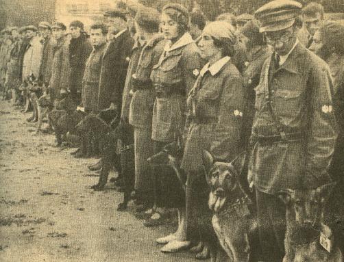 Sovyet Bombacı Köpekler