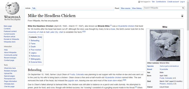 Başsız tavuk Mike