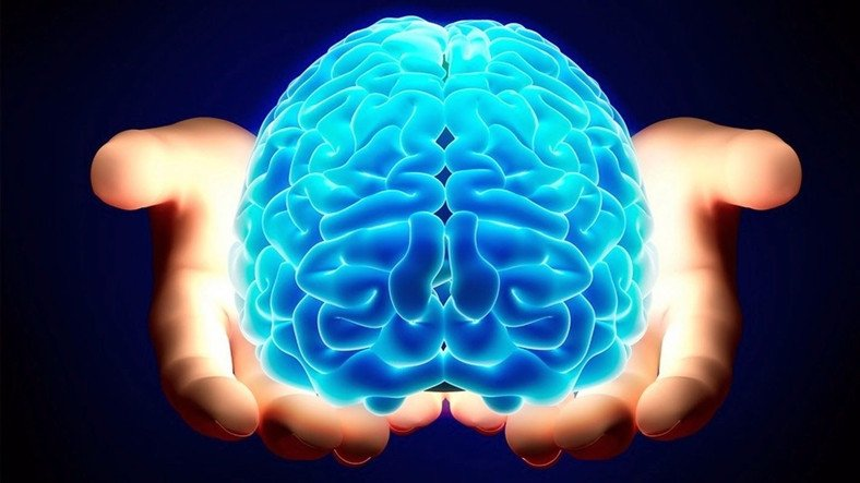 Tıpkı Bir İnsan Beyni Gibi Çalışan ve Hastalıkların Tedavisinde Yol