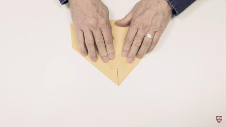 Harvard Üniversitesi Onaylı, En İyi Kağıttan Uçak Tasarımı
