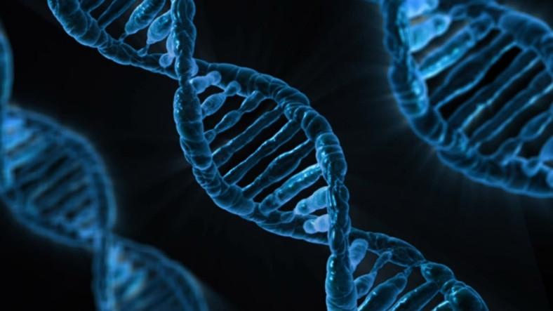 Bilim İnsanları Canlı DNA'sına İşletim Sistemi Hatta Virüs Yüklemeyi Başardı!