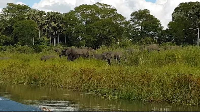 2017 Yılının Kameralara Yansıyan En Korkunç 10 Doğa Olayı