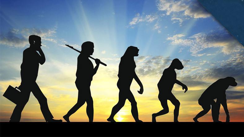 Evrime Karşı Çıkan Hindistan Eğitim Bakanı: Maymunun İnsana Dönüştüğünü Gören Var mı?