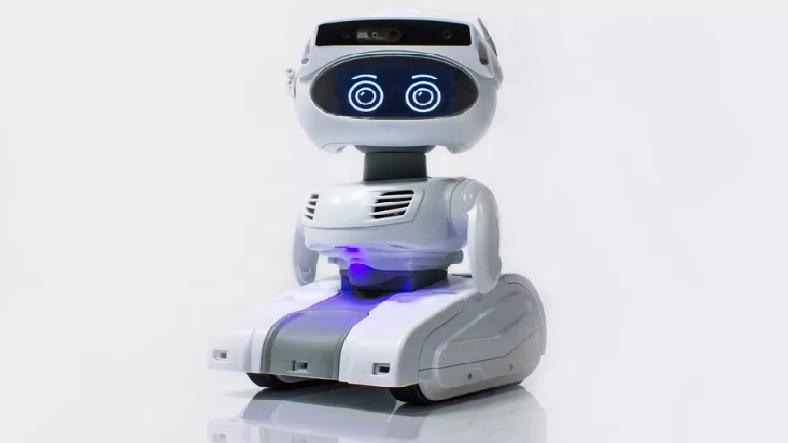 Köpeğinizle Oynayacak Programlanabilir Robot Çok Yakında Satışa Sunulacak!