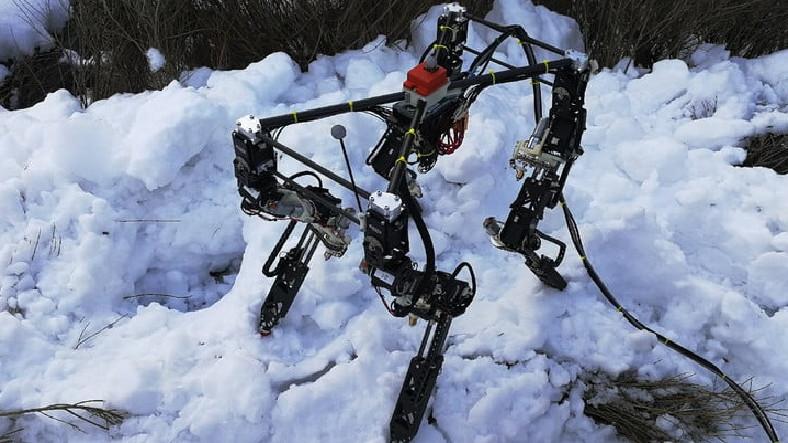 Kendi Kendine Yürümeyi Öğrenen 4 Ayaklı Robot Geliştirildi