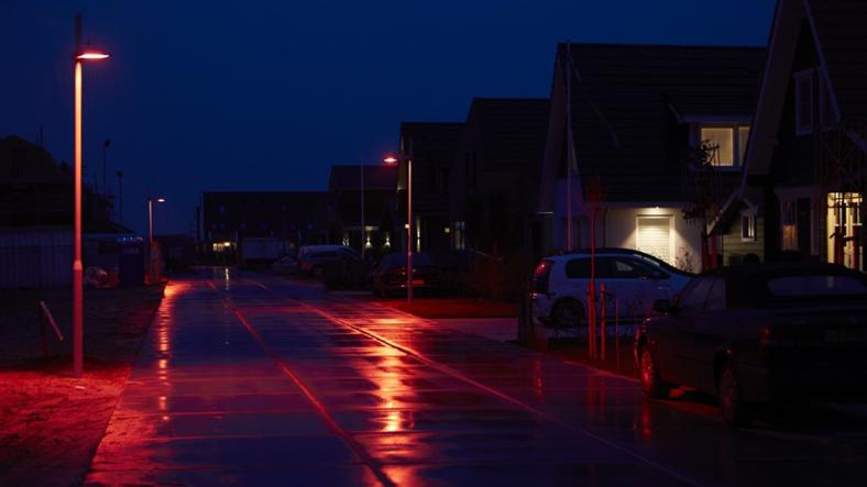 Yarasa Dostu Sokak Işıklandırmaları İlk Kez Hollanda'da Kullanılmaya Başlandı