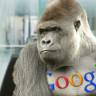 Google Fotoğraflar'da Zenciler İçin 'Gorilla' Benzetmesine Geçici Çözüm