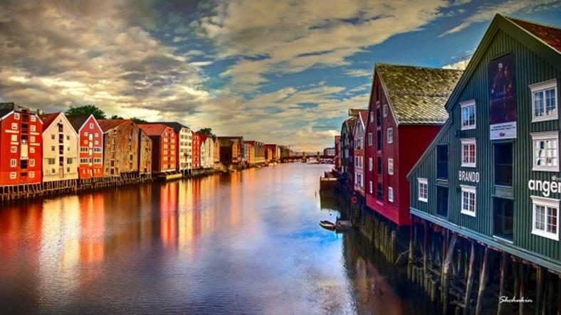 19.Norveç