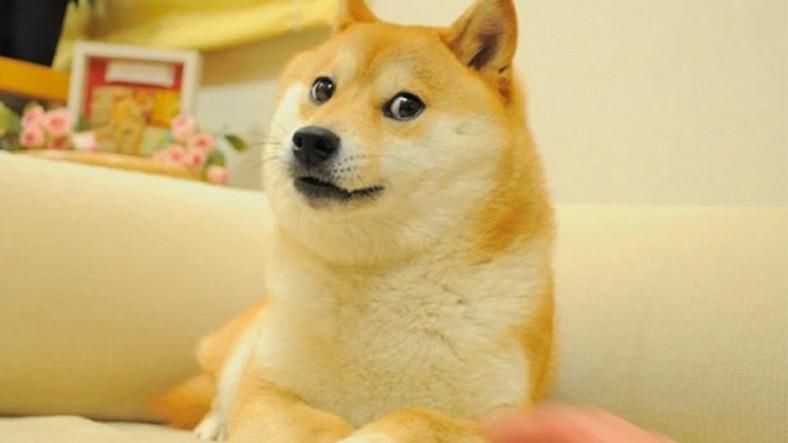 9GAG'in Unutulmaz 'Meme'i Doge, 4 Milyon Dolara Satılarak NFT Rekoru Kırdı