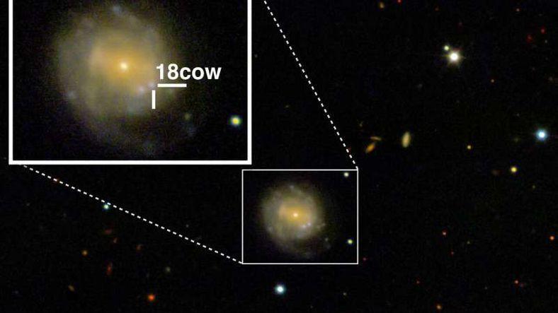 Bir Kara Delik ya da Nötron Yıldızı Oluşumu İlk Kez Gözlendi