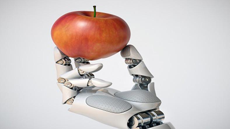 İnternette Satılan Zararlı Gıdaları Keşfeden Yapay Zekâ