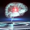 Laboratuvar Ortamında İnsan Beyni Üretildi!