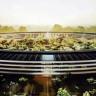 """Apple'ın Yeni Üssü """"Campus 2""""'nin Son Durumunu Drone İle Çektiler"""