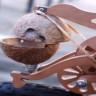 Bisikletinizden At Nalı Sesi Çıkardan İlginç Aparat: Trotify