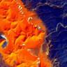 Sahra Çölü'nün Uzaydan Çekilmiş Mükemmel Fotoğrafları!