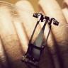 Harvard Üniversitesi'nin Robot Arıları Artık Yüzebiliyor!