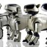 Robot Köpekler Neden Ortadan Kayboldu?