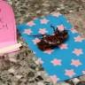 Profesörün Facebook Hesabından Paylaştığı Fotoğraf, Rosie'yi Dünyanın En Ünlü 'Hamamböceği' Yaptı!
