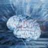 Bilim Adamları Beyin Sinyallerinin Bir Çipe Aktarılmasını Sağlamaya Çalışıyor!