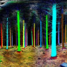 Bir Orman Lazerle Tarandığında Nasıl Bir Görüntü Oluşuyor?