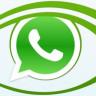 WhatsApp'a Gelecek Güncelleme, Birçok Kişiyi Asla İlgilendirmeyecek Bir Yenilik Getirecek
