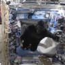 Uluslararası Uzay İstasyonunda Goril Paniği!