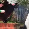 Çim Biçme Makinesine Sprey Boya Atarak Sanat Yapmak