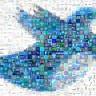 Twitter'ın Kullanıcı Sayısı Ne Kadar?