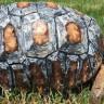 Yangında Kabuğunu Kaybeden Kaplumbağa, 3D Yazıcı Sayesinde Yeni Kabuğuna Kavuştu!