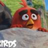 Yok Artık! The Angry Birds Movie Gişede Captain America: Civil War'u Geçti!