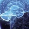 Beyin Travması Geçiren Adam Fransızca Konuşmaya Başladı!