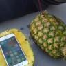 Ananas iPhone'u Korur Mu? 30 Metreden Düşme Testi Yayınlandı!