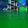 Olimpiyatlardaki Atlama Havuzunun Neden Yemyeşil Olduğu Ortaya Çıktı!