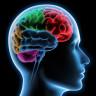 İki Resim Arasındaki Dört Farkı Bulmaya Çalışmanın Beyne Çok Büyük Katkısının Olduğu Ortaya Çıktı