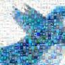 Twitter Türkiye'ye Özel Canlı Destek Hattı Kuracak