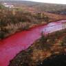 Rusya'da Bir Nehir Garip Bir Şekilde Kan Rengine Döndü!