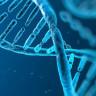 Bilim İnsanlarından 6. Hisle İlgili Açıklama: O His, Aslında Mutasyonlu Bir Gen!
