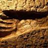 Tanzanya'da İnsana Ait  19.000 Yıllık Ayak İzleri Bulundu!