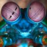 Korkunun Rengini Dahi Ayırt Edebilen, Müthiş Yetenekleri Olan Hayvan: Mantis Karidesi