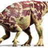 Bilim Adamları İlk Kez Fosilleşmiş Bir Dinozor Beyni Buldu!
