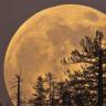 """Son 70 Yılın En Büyük Dolunay'ı: """"Süper Ay"""" Geliyor!"""