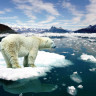 Kuzey Buz Denizi'ndeki Sıcaklık Artışı İnanılmaz Boyutlara Ulaştı!