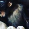 Sanal Gerçeklik Gözlüğü Takınca ''Maymuna Dönen'' Maymun!