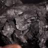Dünya, Çevreye Zarar Veren Kömür Santrallerini Kapatmaya Hazırlanıyor