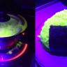 İnsanı Şaşırtan Parlak Neon Yemekler Nasıl Yapılıyor?