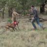 Videosu Viral Olan 'Kanguruya Yumruk Atan Adam'ın Hikayesi Ortaya Çıktı
