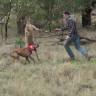 Kanguruya Yumruk Atan Adama Ölüm Tehditleri Yağıyor